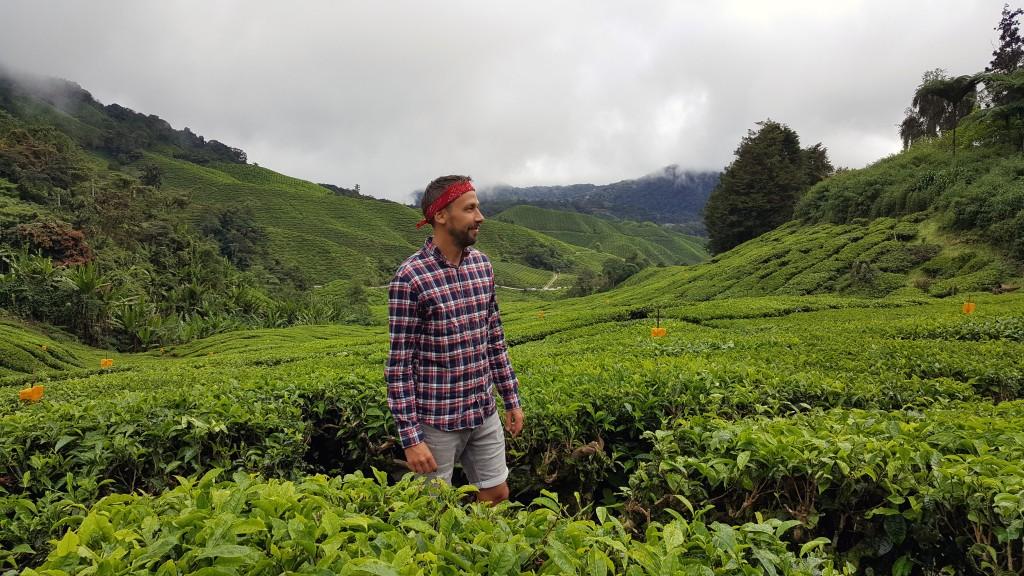 A explorer in the Cameron Highlands, Malaysia