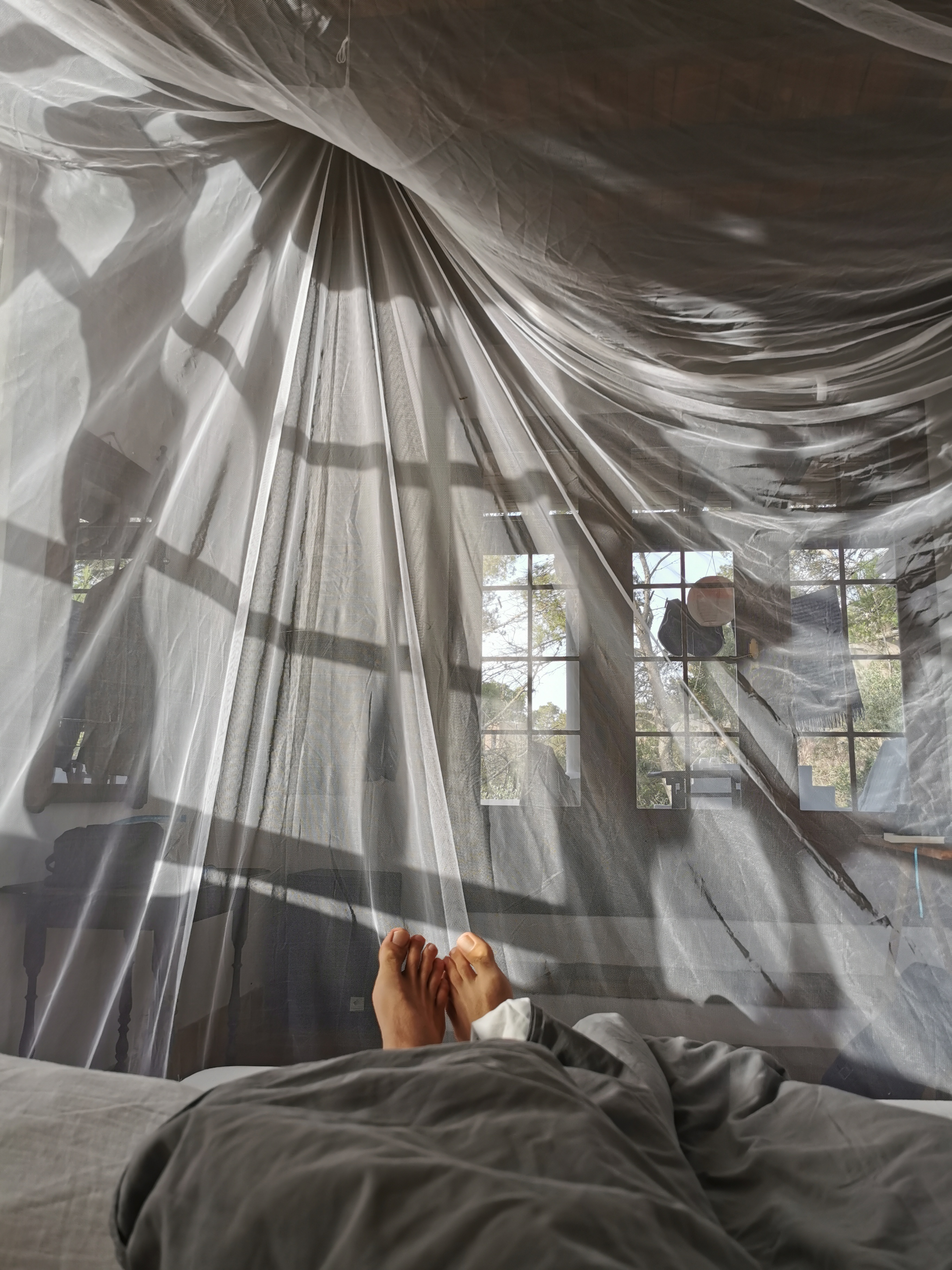 Cozy morning under the mosquito net